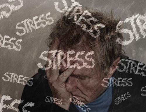 Alt om stress – hvad, hvordan og hvorfor!